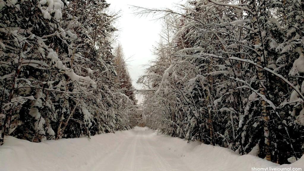 Два дня шёл снег