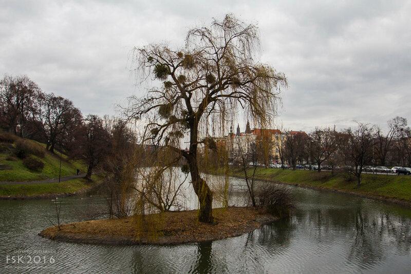 wroclaw-7.jpg