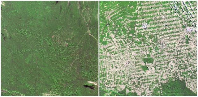 Бессточное озеро Мар-Чикита в Аргентине мелеет на глазах.