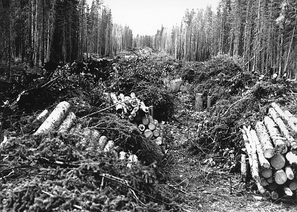 11. Самолет времен Второй мировой войны на Алеутском фронте.