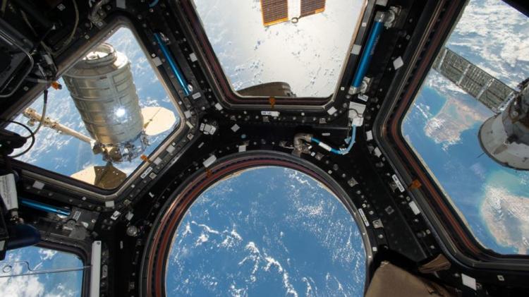 НаМКС попробуют сделать кефир— Космический ЗОЖ