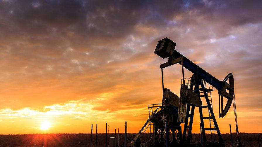 Стоимость барреля нефти поднимется до $65— руководитель Минприроды