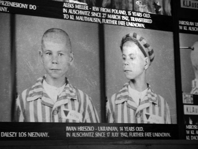 Украинский парнишка заключенный Аушвица.jpg