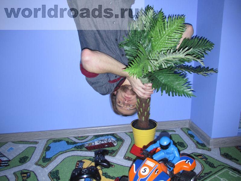 Дом вверх дном в Санкт-Петербурге