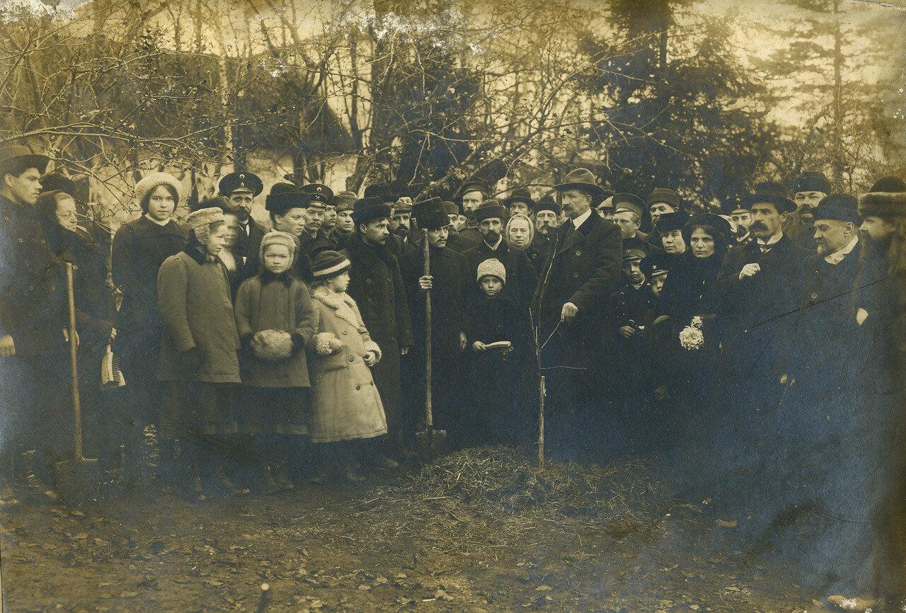 Посадка деревьев городской общественностью.  1900-1910