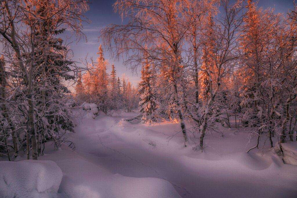 РОЖДЕСТВЕНСКАЯ СКАЗКА Кужилев Евгений  https://rosphoto.com/ugallery/landscape/75007