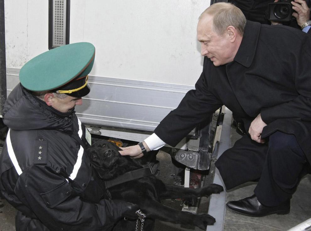 8. Путин и собачка. Визит Путина на контрольно-пропускной пункт на границе между Беларусью и Польшей