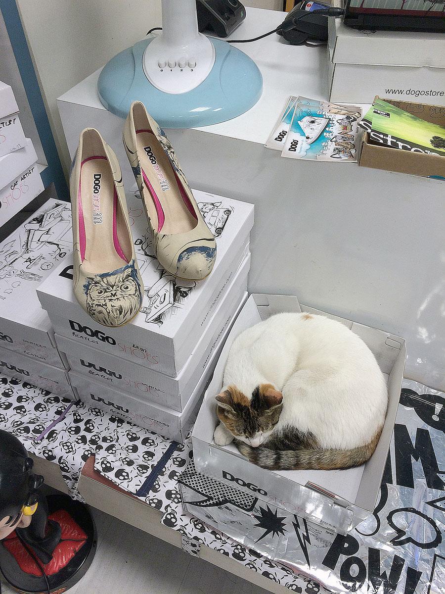78. Да-да, не искусством единым. Новые туфли еще никому не вредили.