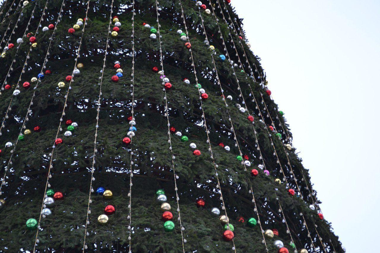 Заказана установка за20 млн 6 новогодних елок поКрасноярску: где поставят