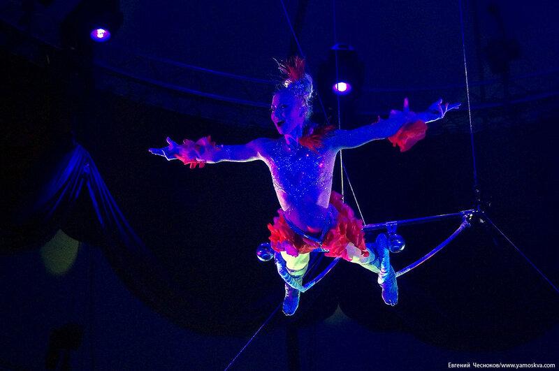 Цирк Никулина. Магия цирка. 21.02.17.08. Шмелёва..jpg