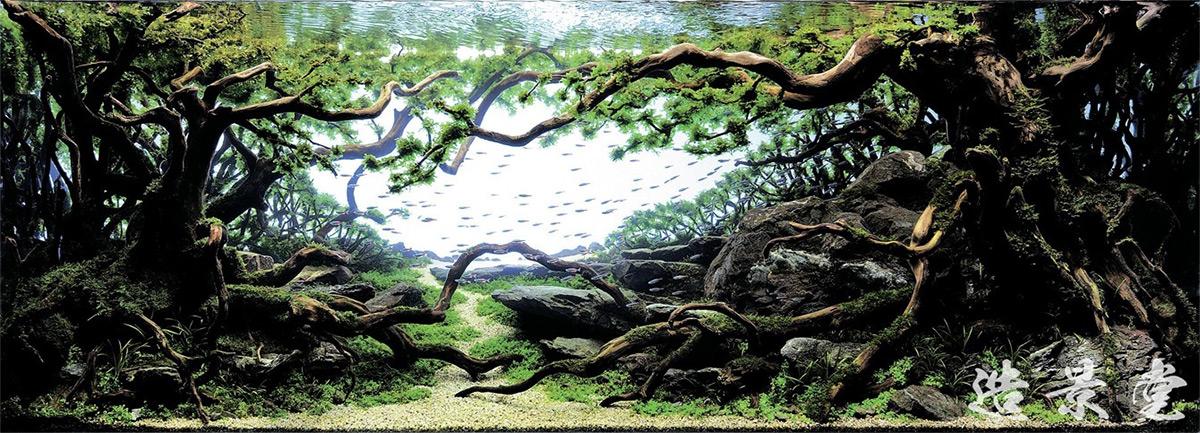 Pale Wind , Takayuki Fukada. Japan. 2013 IAPLC Gold Prize