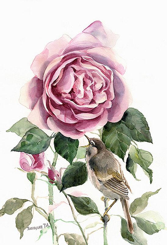 Соловей и роза..jpg