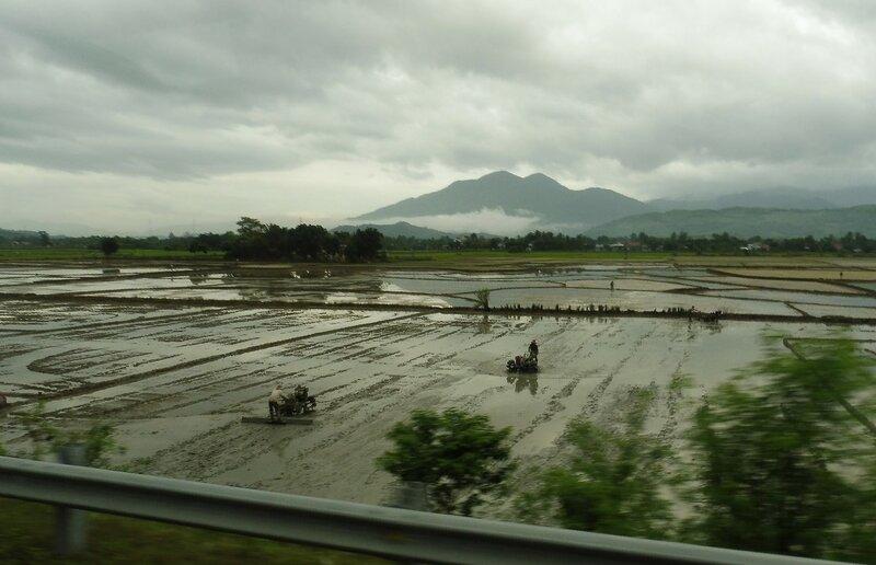 Обработка рисового поля
