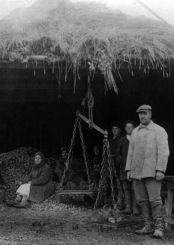 Спецпоселок Верхнеашинский. Взвешивание картофеля