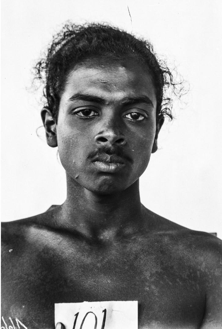 523. Горный сингалец