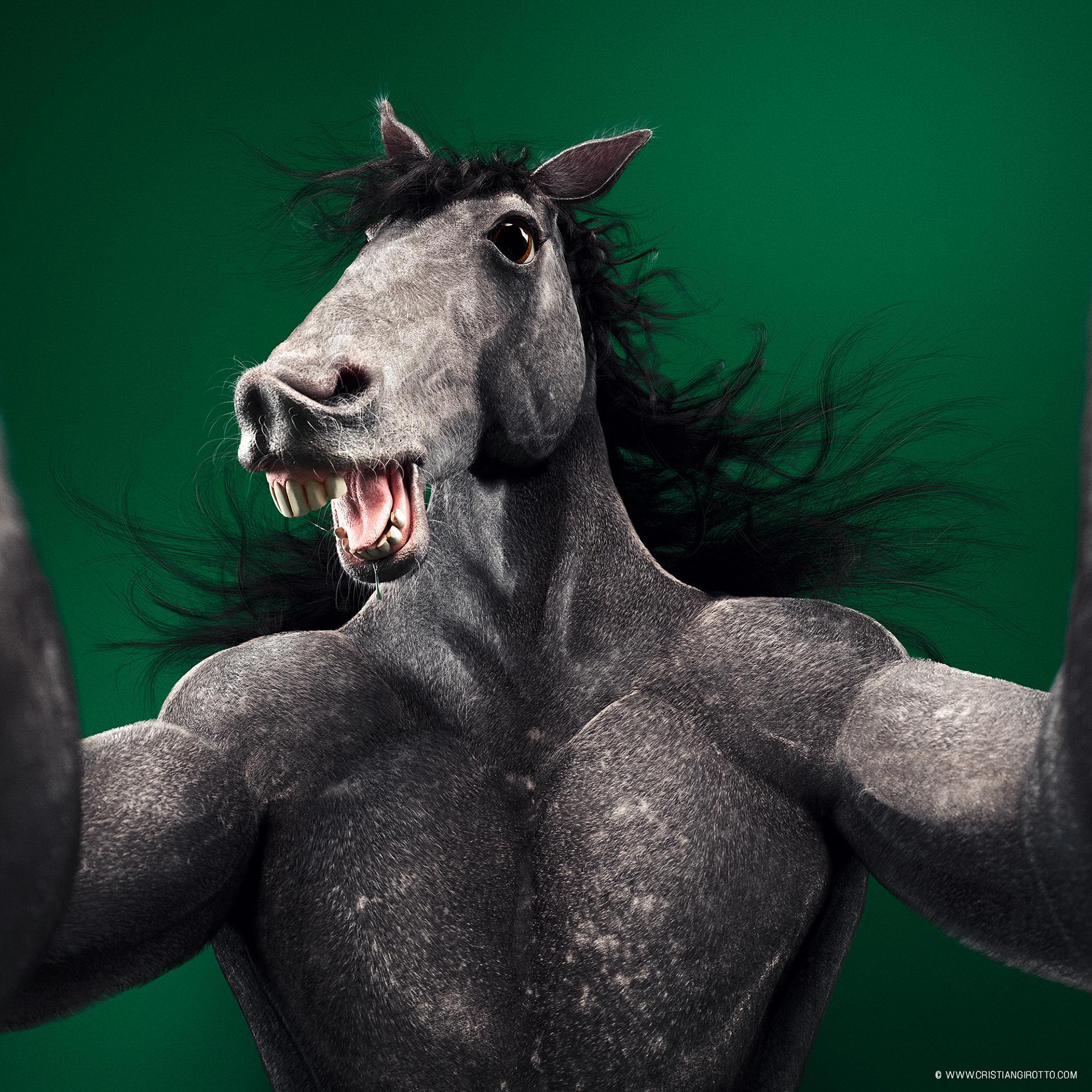 Социальные типажи - Social animals by Cristian Girotto