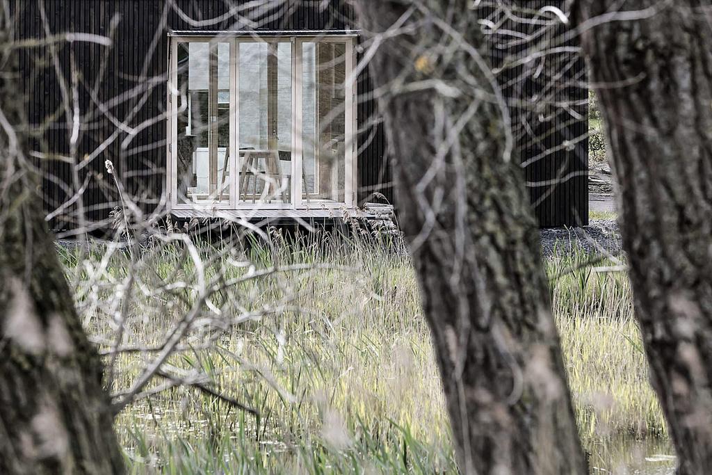 ark-shelter-6.jpg