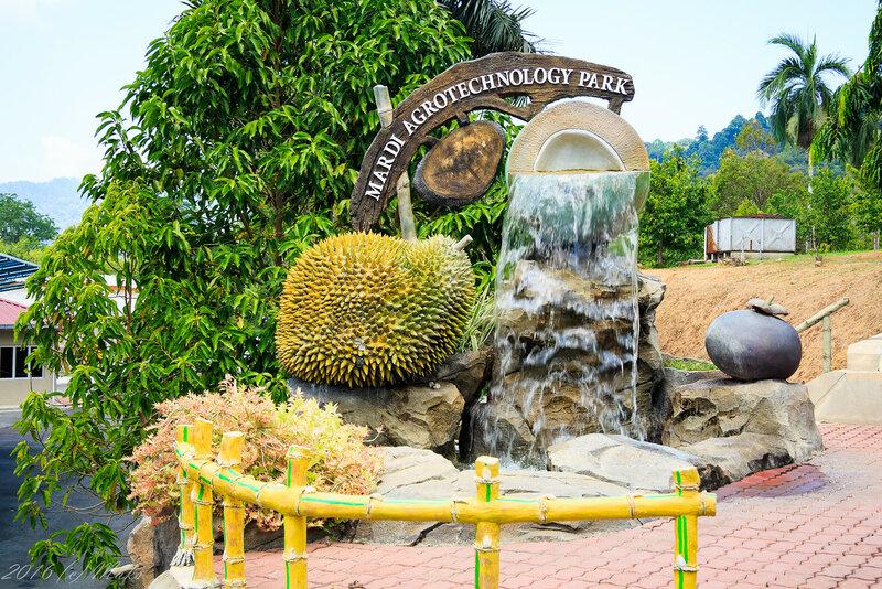Агротехнологический парк