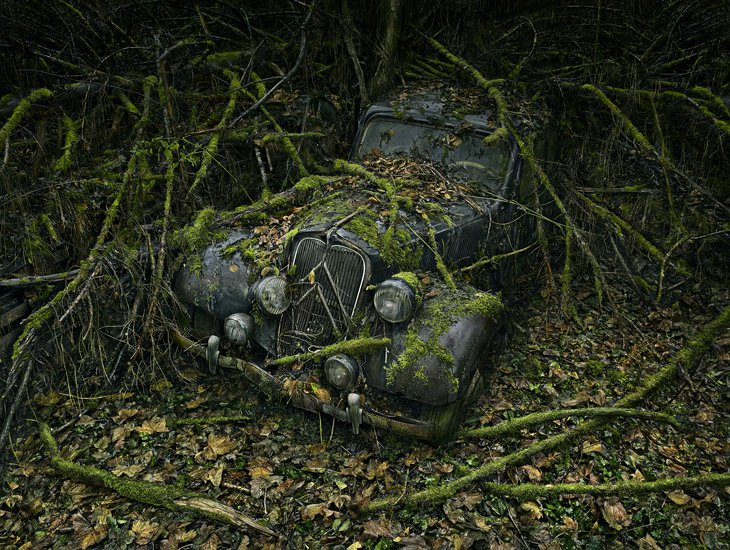 Потратив в общей сложности 2 года на поиск своих «моделей» в лесах, Питер Липпман собирается выпусти
