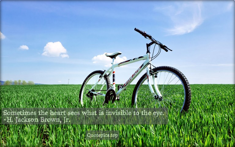 Sometimes the heart sees what is invisible to the eye. ~H. Jackson Brown, Jr.
