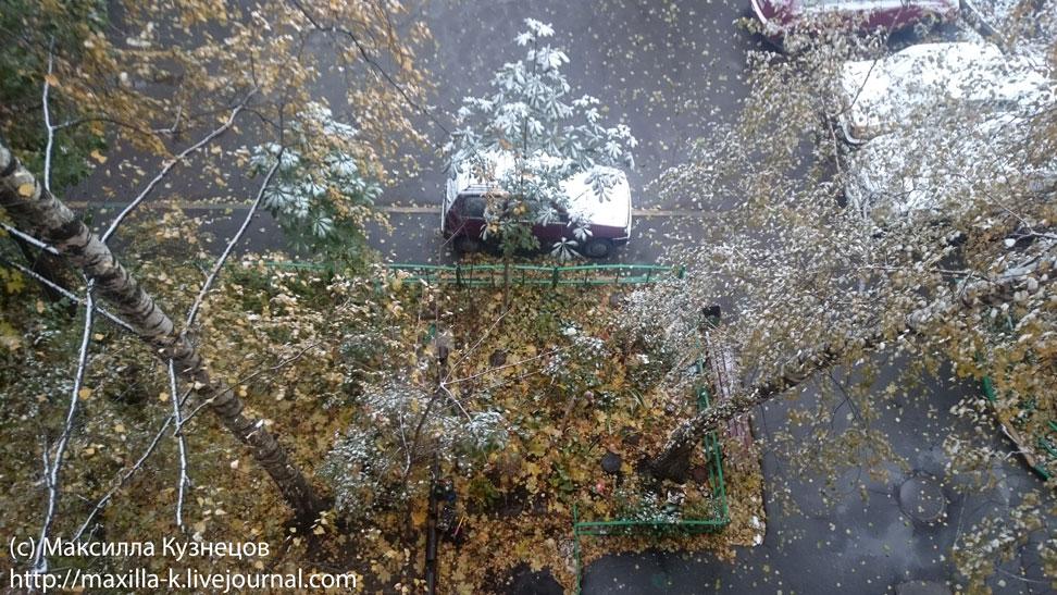Варгасова осень
