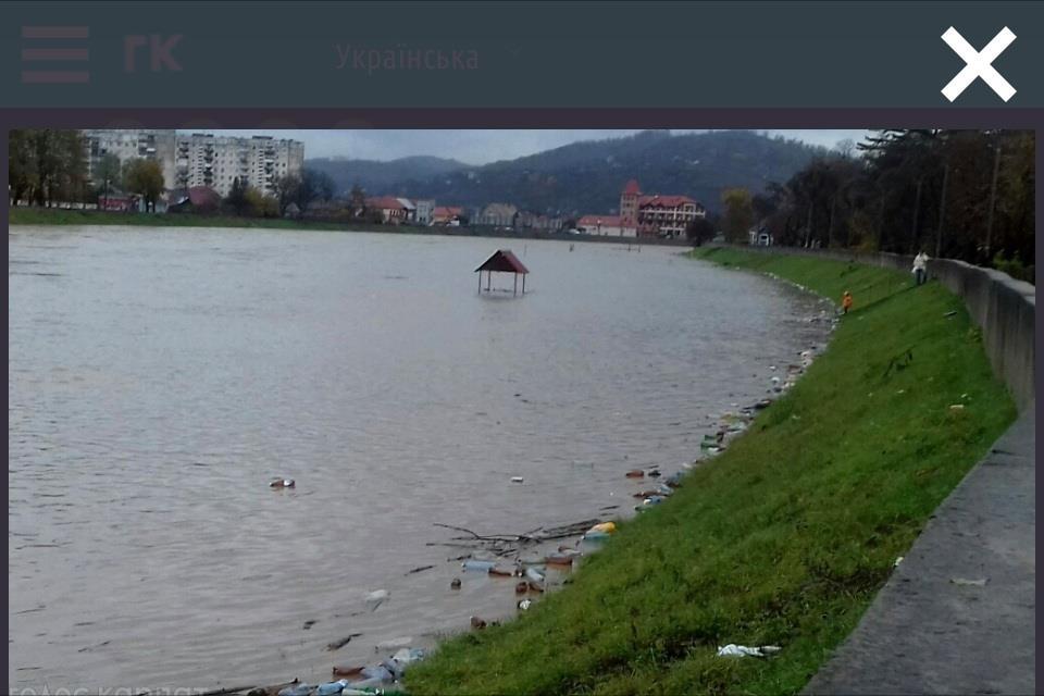 Латорица_затопленная