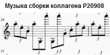 https://img-fotki.yandex.ru/get/195637/158289418.3da/0_1755dd_a612a872_orig.png