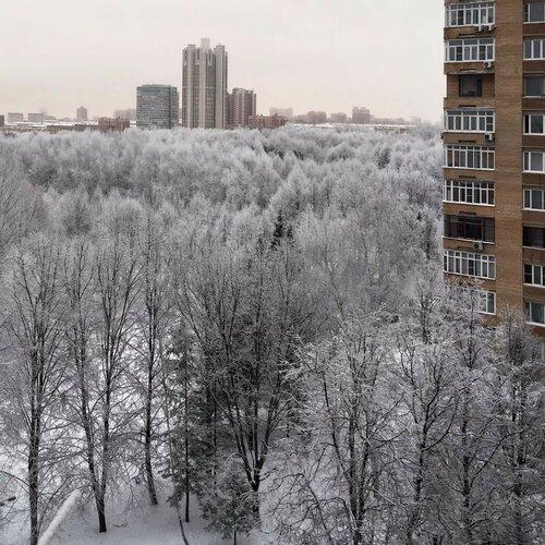 https://img-fotki.yandex.ru/get/195637/194408087.14/0_1431fb_4c4efc77_L.jpg