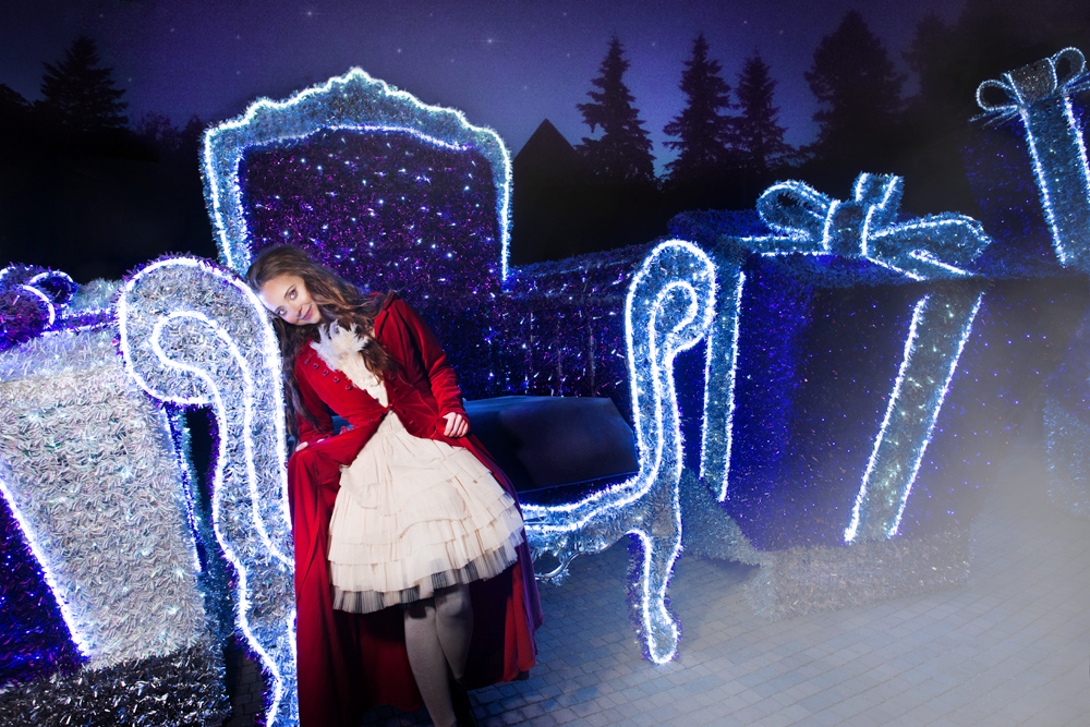 Night Fairy Tale / Iwona Pączek