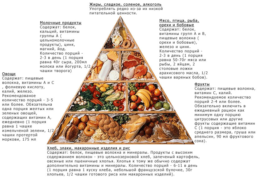 Пирамида питания с данными