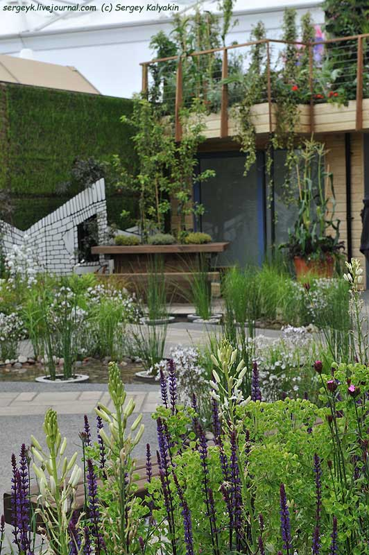 The RHS Greening Grey Britain Garden (72).jpg
