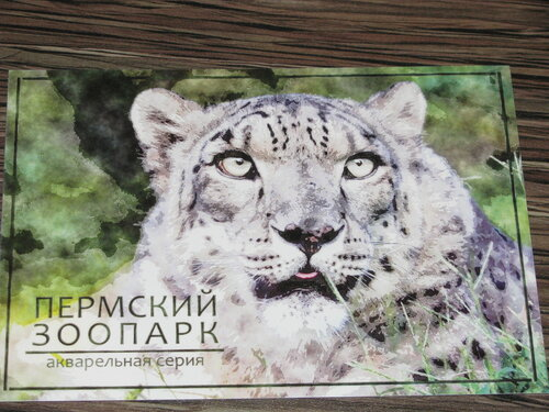 https://img-fotki.yandex.ru/get/195637/27113955.5f/0_959c2_5892e107_L.jpg