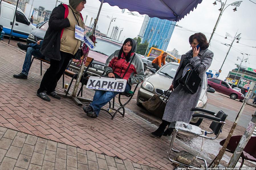 20. Отсюда можно уехать и в Донецк, и в Луганск, и в Крым, и в Москву.