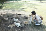 okunoshima-rabbit-island-japan-1.jpg