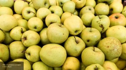 Ученые назвали 5 фруктов, помогающих сбросить лишний вес