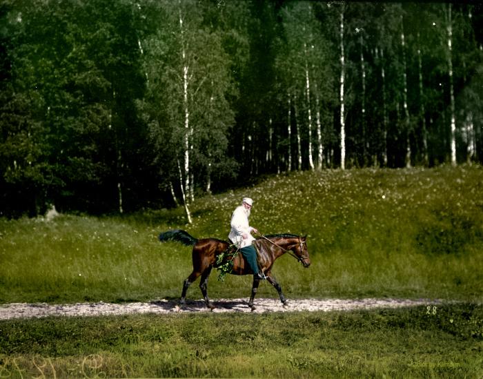 Leo Tolstoy 1908