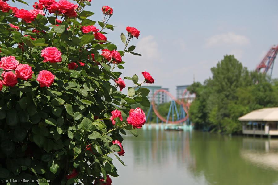 Tashkent_May7.JPG