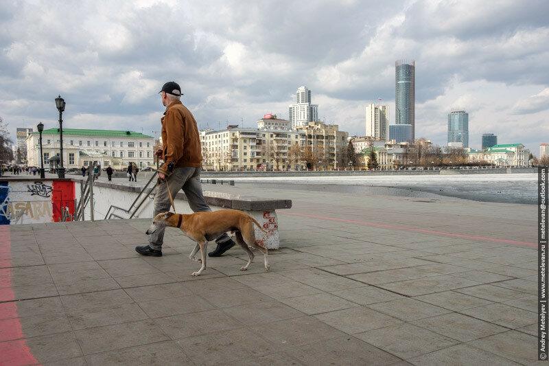 мужчина с собакой на набережной