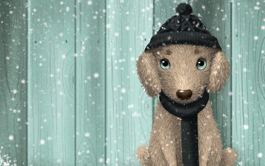 Новый год, новогодняя игрушка, смешная собачка