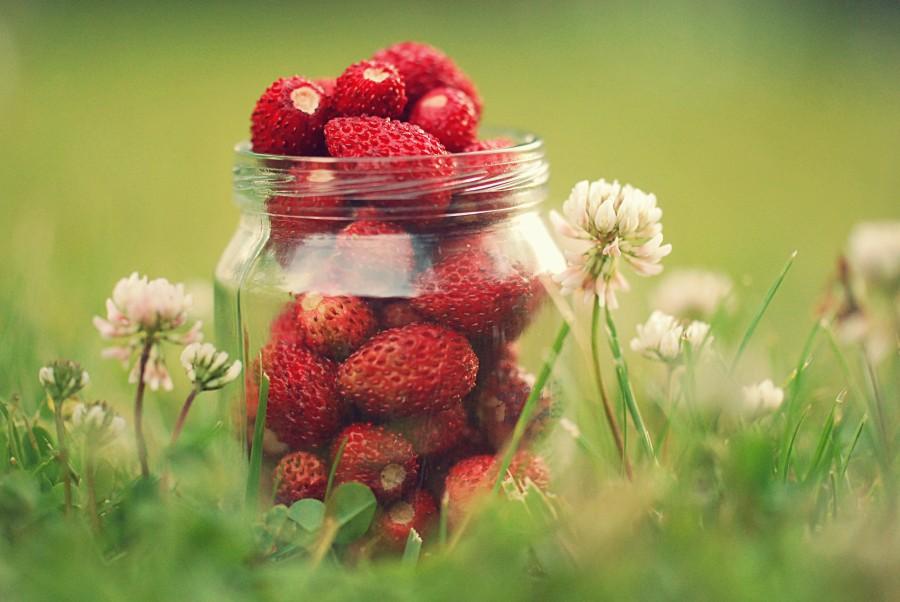 3. Сладкая без сахара. Несмотря на то, что клубника — сладкая ягода, она почти не содержит сахара. И
