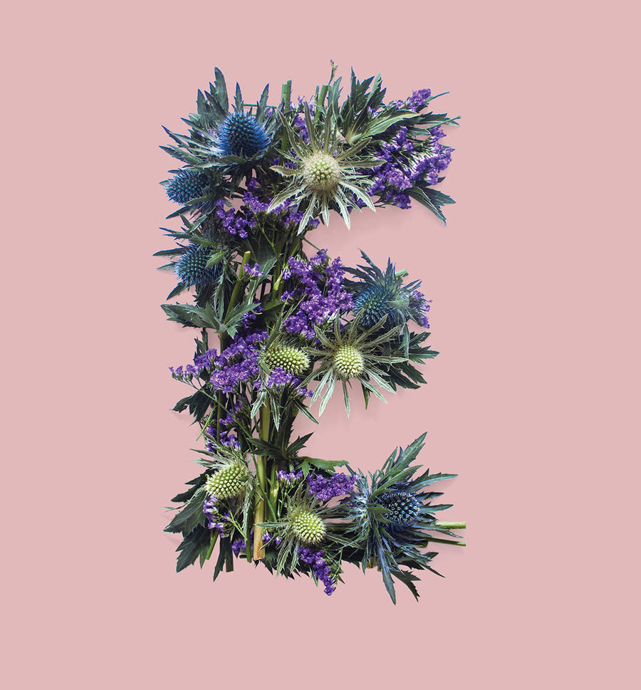 Allegorical Floral Typography for Scotland