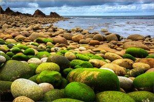 На Природе, в Северной Ирландии, фото из интернета (3).jpg