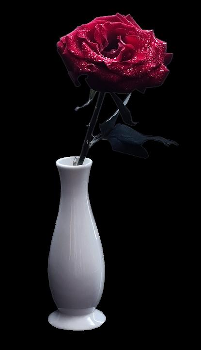 【免抠PNG素材篇】PNG各种插花艺术之美 第12辑 - 浪漫人生 - .