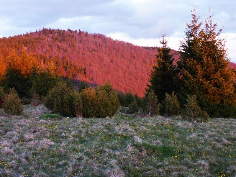 вечерний пейзаж в горах сербии