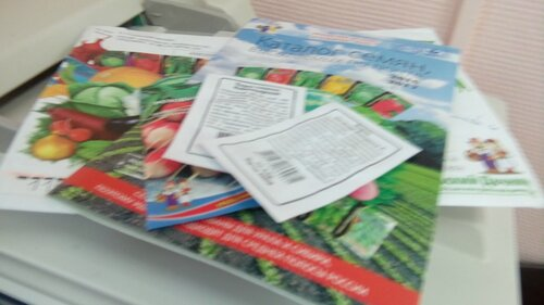 Каталог семян и три пакетика семян, дисконтная карта в подарок