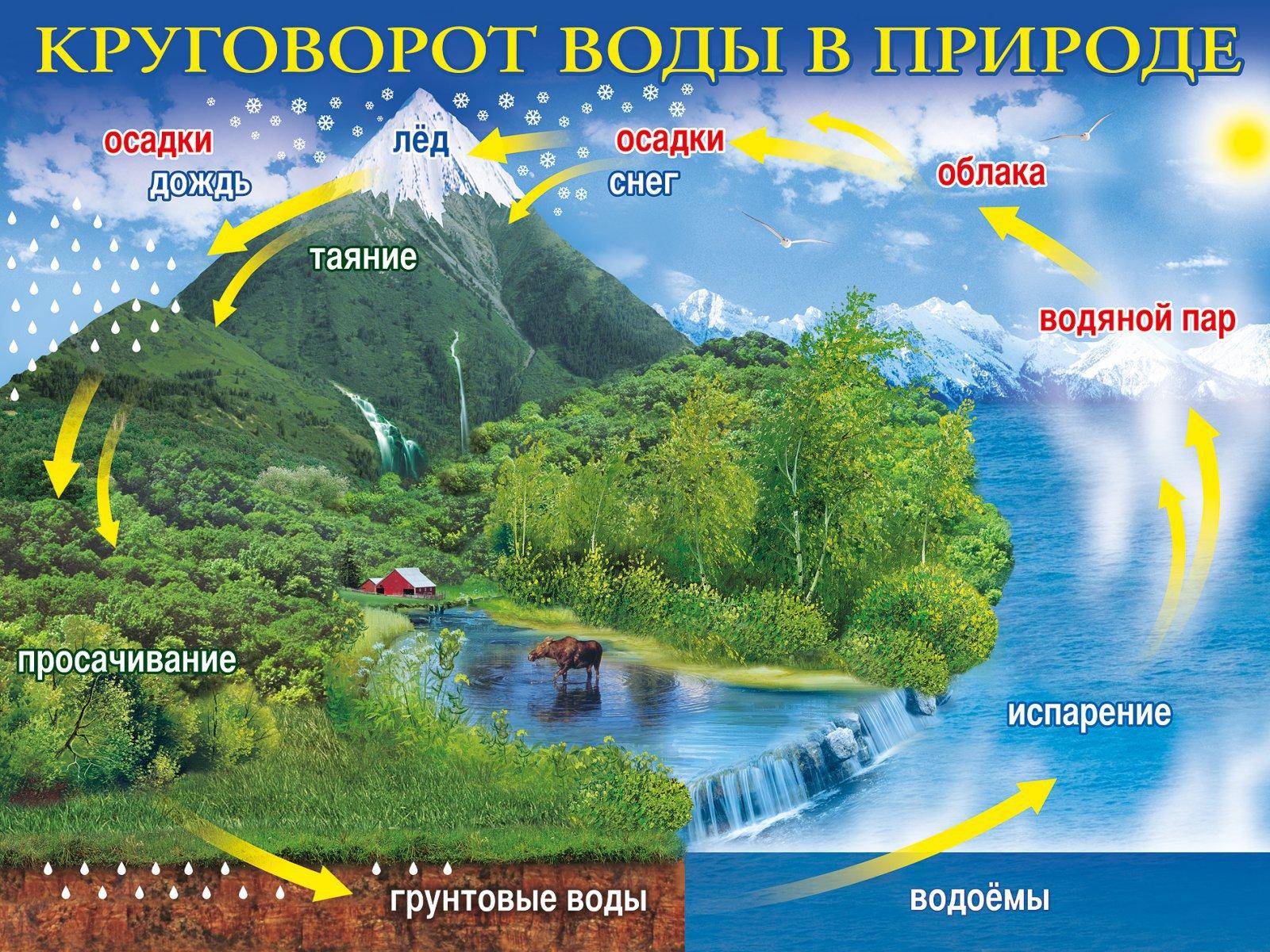круговорот воды в природе.jpg