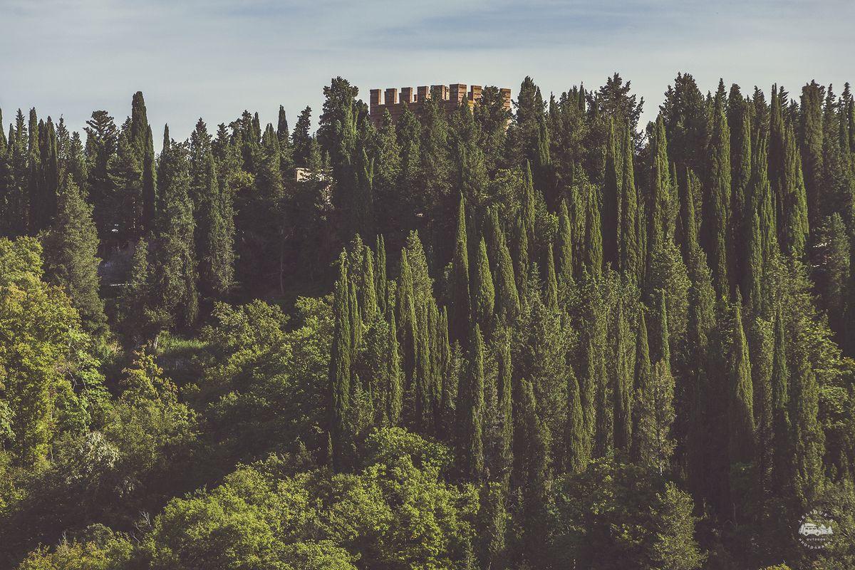 А вот уже виднеется аббатство Monte Oliveto Maggiore, в которое мы поехали из Пиенцы. Снова Wiki в п