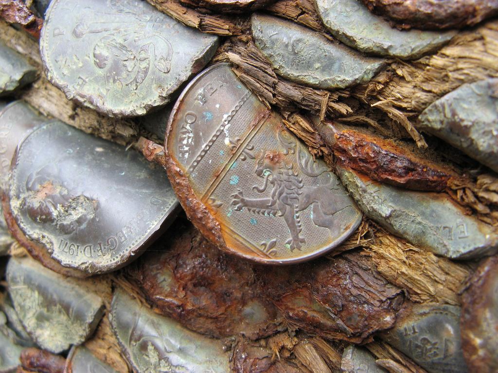 9. Считается, что сколько монет вы засунете в дерево, столько детей у вас будет в будущем.