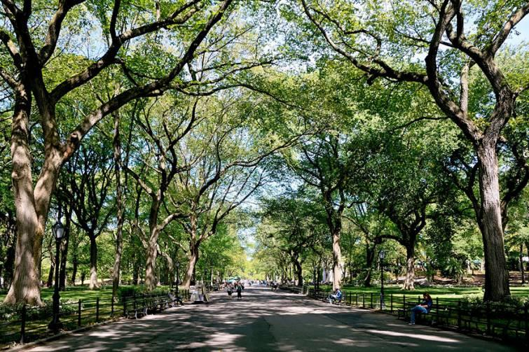 10. Парк Поетс Уолк, Нью-Йорк, США