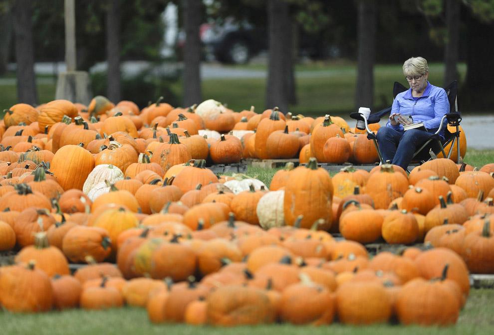 15. Невероятные краски в парке Thacher State Park, Нью-Йорк, 18 октября 2016. (Фото Mike Groll)